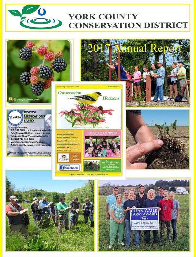 YCCD-2017-Annual-Report-1