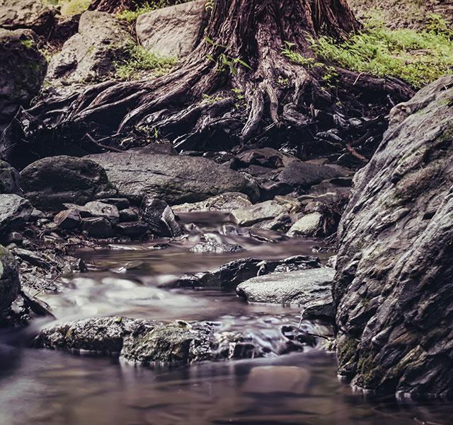 brown rock in river