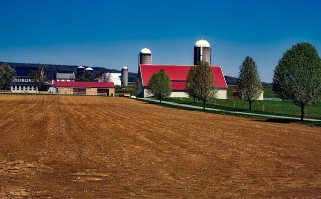 habitat farmland