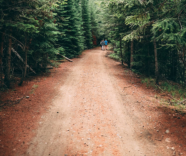 narrow dirt road