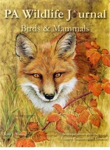 PA-Wildlife-Journal-221x300